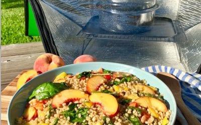 Wild Wheat Berry, Peach & Spinach Salad